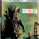 Godzilla 4K-2D